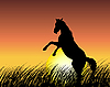 Vector clipart: horse on sunset