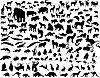 Vector clipart: animals