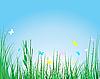 Vector clipart: grass background