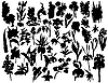 Vector clipart: plants and flowers