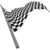 Векторный клипарт: проверено флаги