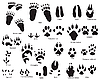 Animal tracks | Stock Vector Graphics