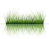 Vector clipart: grass on water