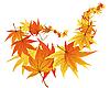 Vektor Cliparts: gedrehten Blättern