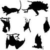 Vector clipart: bats silhouettes set