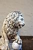 ID 3346396 | Llion near Palazzo Vecchio | High resolution stock photo | CLIPARTO