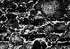 Grunge white and black brick wall background | Stock Illustration