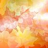 Vector clipart: Autumn maples