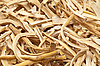 Cut dried roots | Stock Foto