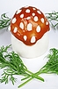 Egg - fly agaric   Stock Foto