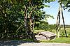 ID 3087755   나무도   높은 해상도 사진   CLIPARTO