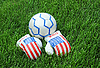 Boxing Gloves and Soccer Ball on Green Lawn | Stock Foto