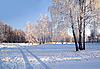 ID 3106118 | Winter Day | High resolution stock photo | CLIPARTO