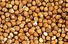 Photo 300 DPI: Shelled Hazelnuts