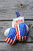 ID 3117555 | Boxing Gloves and Tiny US Flag | High resolution stock photo | CLIPARTO