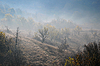ID 3151663   Foggy Hill Slope in the Late Fall   High resolution stock photo   CLIPARTO