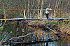 ID 3179143   Sad Woman on Wooden Bridge in the Late Fall   High resolution stock photo   CLIPARTO