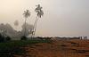 斯里兰卡渔村有雾的早晨   免版税照片