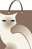 Vector clipart: package with white cat