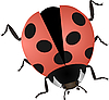 ladybug | Stock Vector Graphics