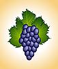 Векторный клипарт: Clous деятельности фиолетовый виноград