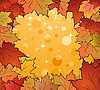 Vector clipart: autumn frame made in maples