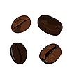Vector clipart: coffee bean