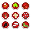 Vector clipart: Button set red of ecology