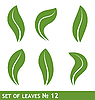 Vector clipart: of leaves set for design