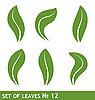 Векторный клипарт: Иллюстрация листьев набор для дизайна