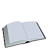 Vector clipart: Opened book is on white