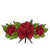Векторный клипарт: красивые красные розы изолирован