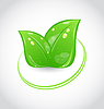 Vector clipart: Eco green design symbol with leaves