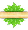 Eco friendly background with green leaves, wooden