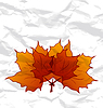 Herbstliche Ahornblätter, zerknittertes Papier Textur