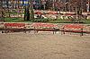 木在公园的长椅   免版税照片