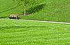 板凳在公园   免版税照片