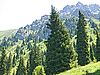 Górski krajobraz Trans-Ili Alatau | Stock Foto