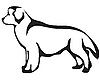 Vector clipart: Newfoundland dog