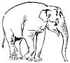 Vector clipart: Elephant