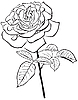 Vector clipart: large rose