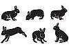 Векторный клипарт: силуэты зайцев