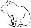 Vector clipart: capybara
