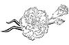 Clavel | Ilustración vectorial