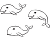 Vector clipart: Outline drawing whale