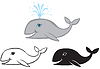 Vector clipart: Set of images whale