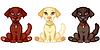 Vector clipart: Three puppies