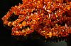 Amber beads | Stock Foto