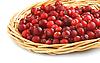 Photo 300 DPI: Cranberries in wicker tray