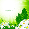 Vector clipart: floral template